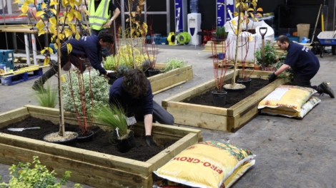 Young people competing in Horticulture competition
