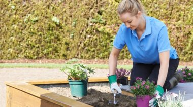 Photo of landscape gardener tending to flower beds